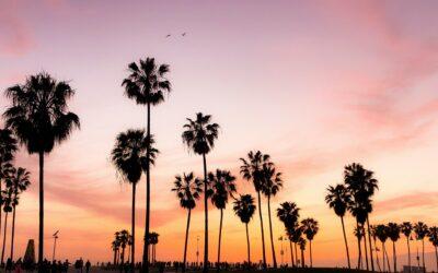 5 raisons d'INVESTIR en BOURSE 🇺🇸 USA