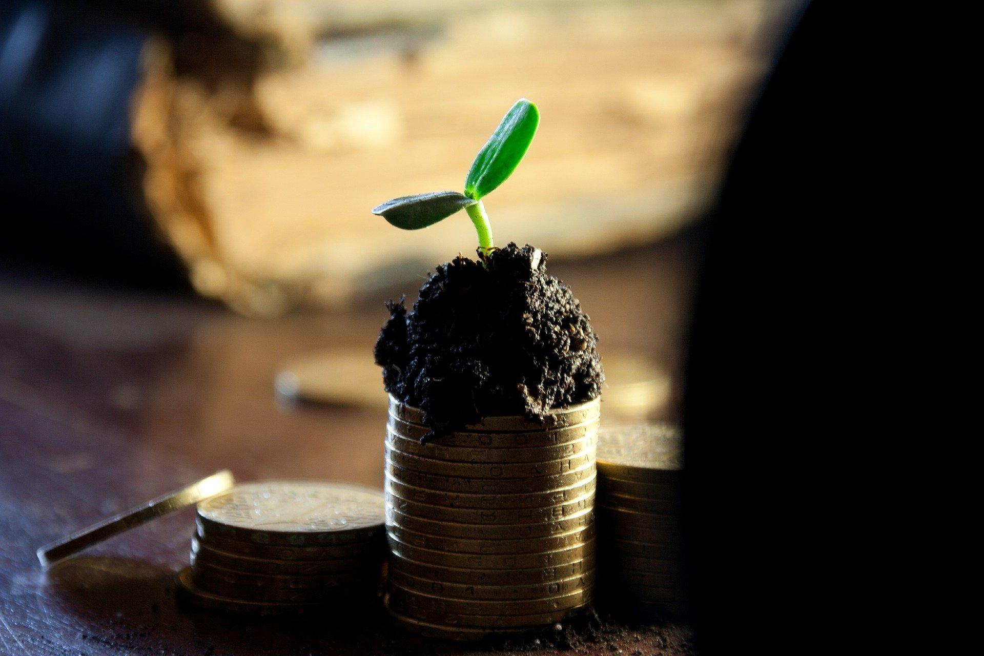 Pourquoi investir dans les actions avec dividendes en 2021